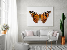 Load image into Gallery viewer, Painted Lady Butterfly Art Print