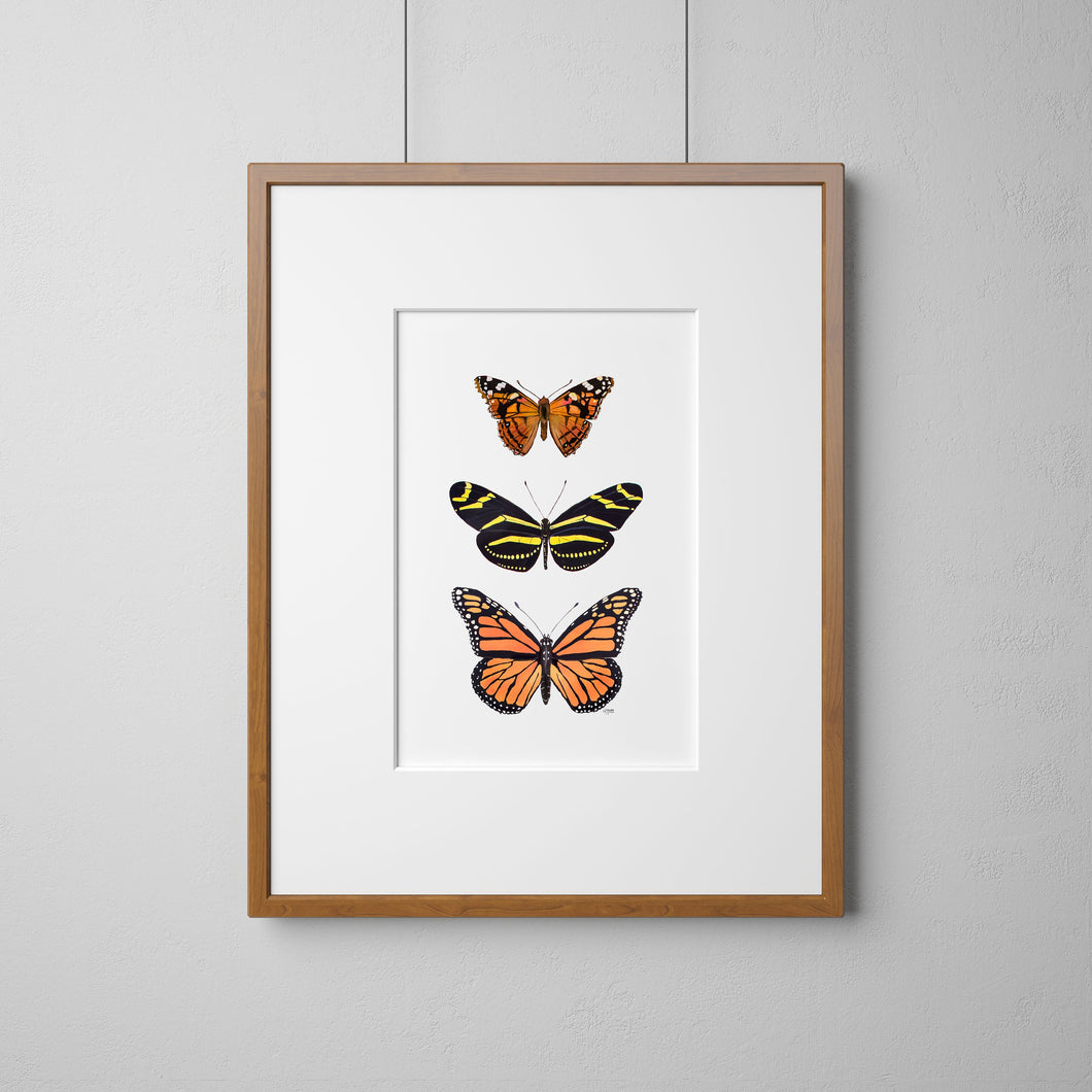 Butterfly Trio Print