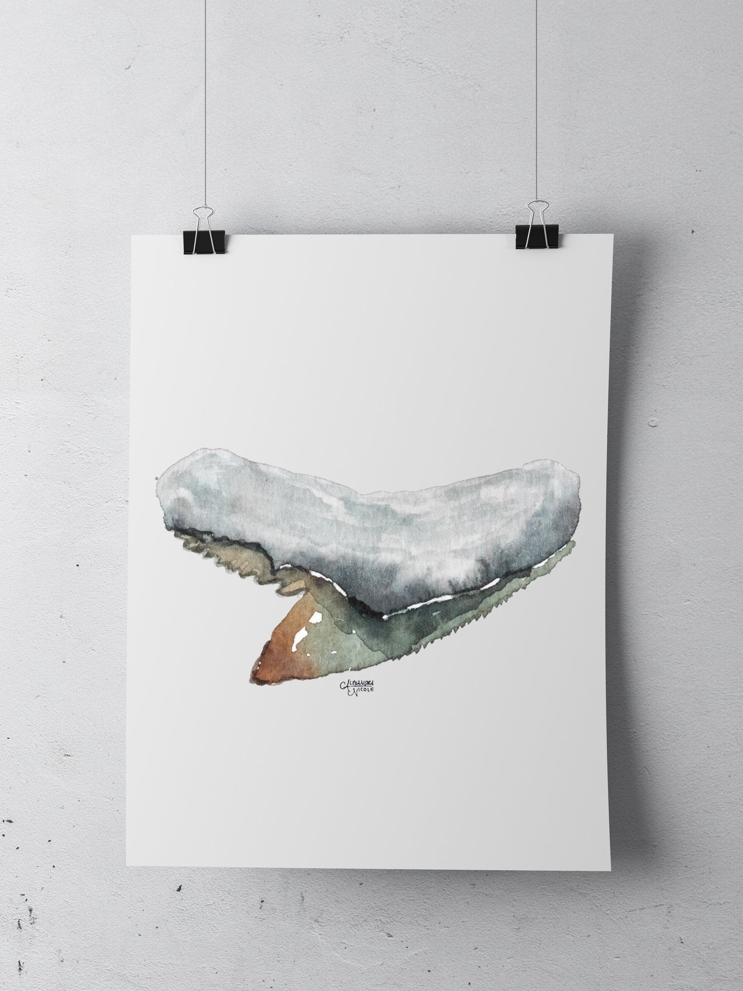 Tiger Shark Tooth Art Print - Shark Tooth No. 7 by Coastal Artist Alexandra Nicole $27