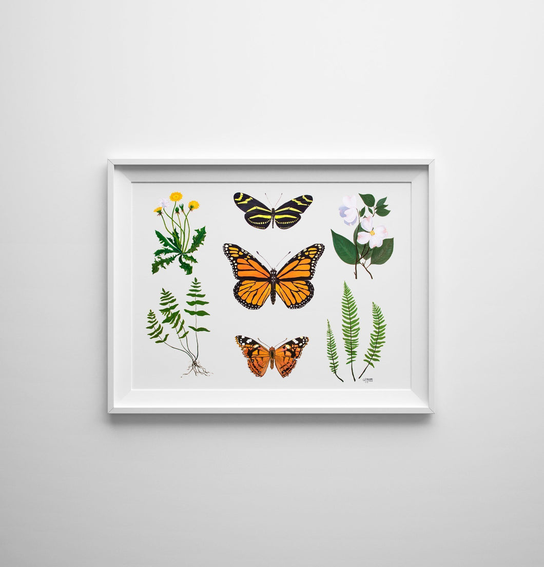 This print features dandelion, dogwood, and various fern botanicals as well as three butterflies, the zebra longwing, monarch, and painted lady.