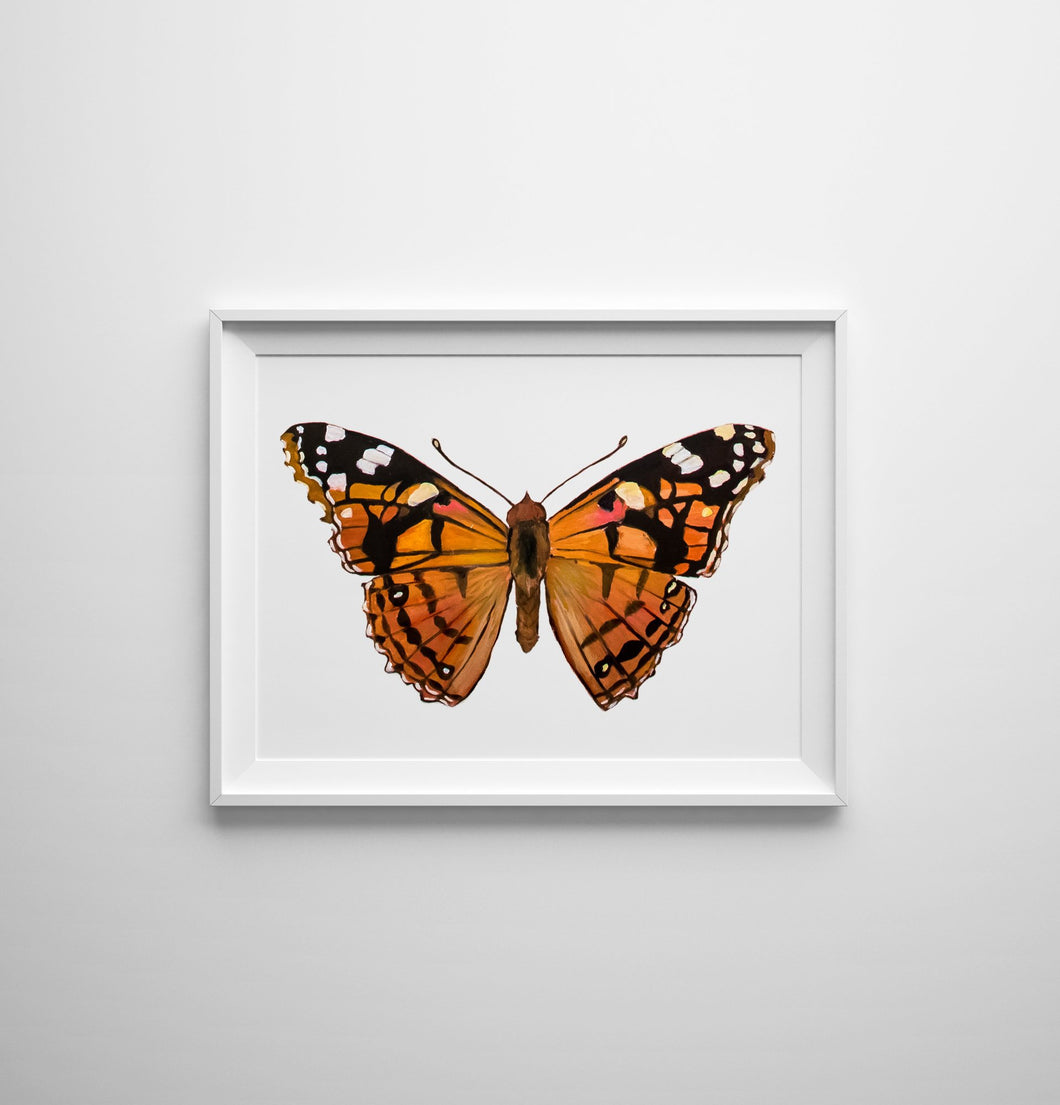 Painted Lady Butterfly Print