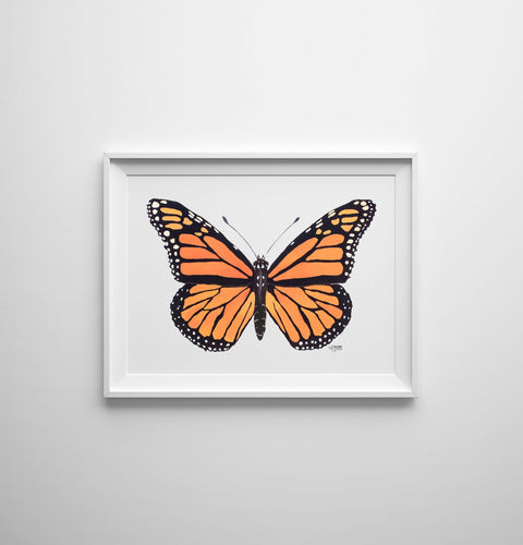 Monarch Butterfly Art Print by Alexandra Nicole