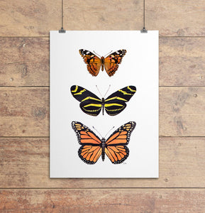 Butterfly Wall Art by Alexandra Nicole