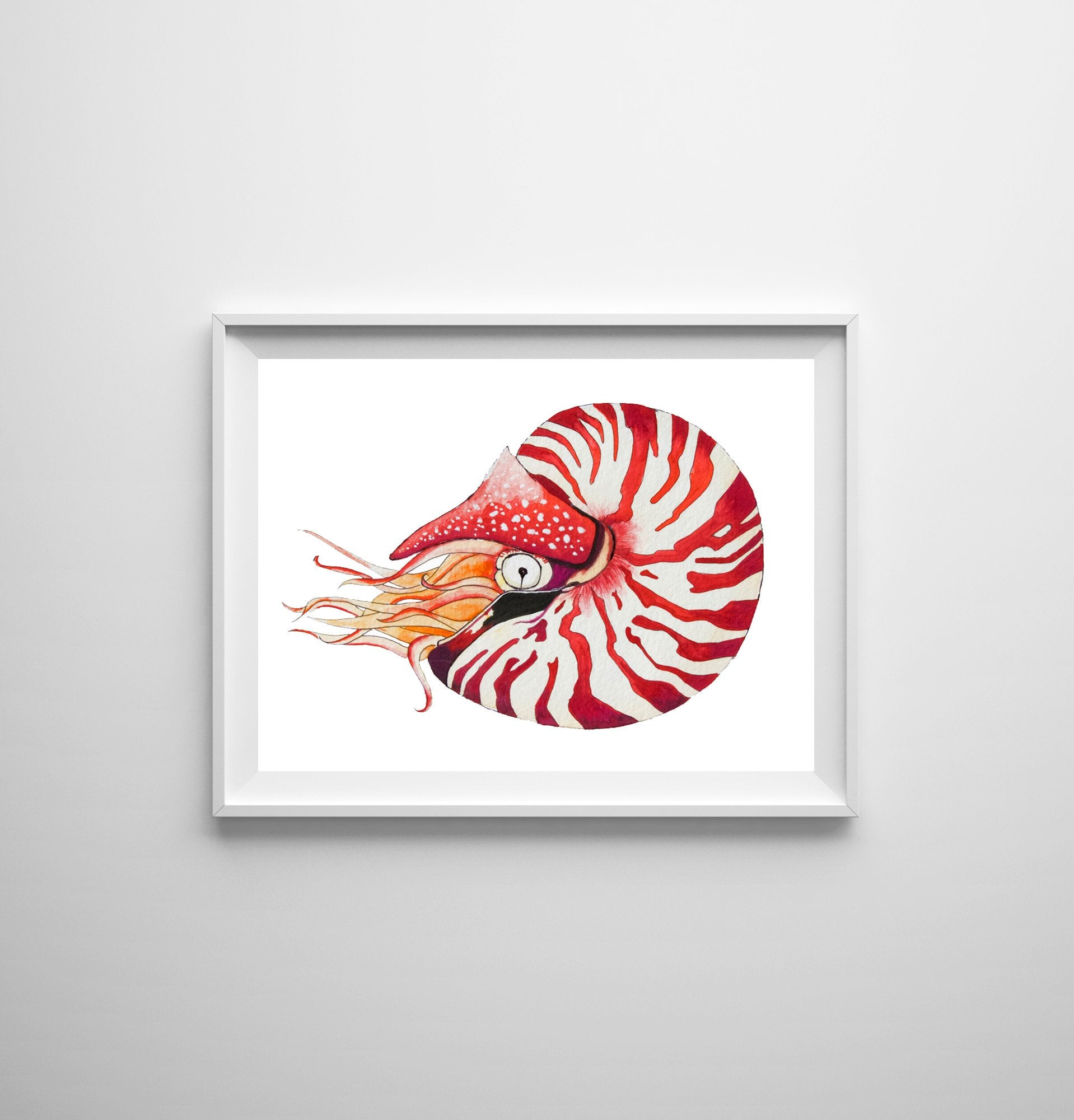 Nautilus Shell Watercolor Art Print by Alexandra Nicole