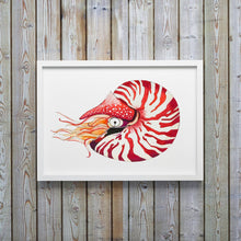 Load image into Gallery viewer, Nautilus Shell Art Print by Alexandra Nicole