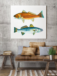 Red Drum and Trout Painting by Alexandra Nicole