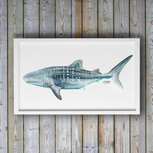 Load image into Gallery viewer, Whale Shark Watercolor Art Print by Alexandra Nicole