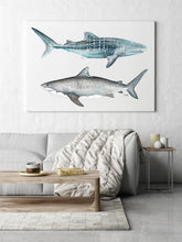 Load image into Gallery viewer, Tiger and Whale Shark Print