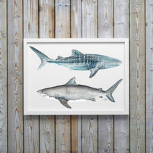Load image into Gallery viewer, Tiger and Whale Shark Watercolor Art Print by Alexandra Nicole