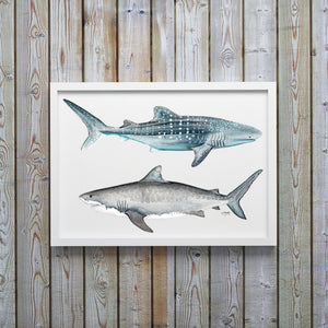 Tiger and Whale Shark Watercolor Art Print by Alexandra Nicole