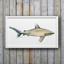 Load image into Gallery viewer, Oceanic Whitetip Shark Art Print by Alexandra Nicole