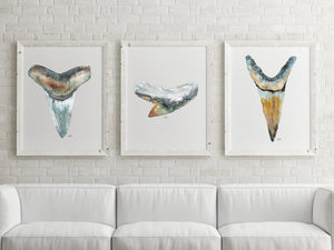 Art Print Set, Shark Tooth, Discounted Prints, Gallery Wall Art, Shark Teeth Art, Coastal Art, Watercolor Print Set, Beach House Decor