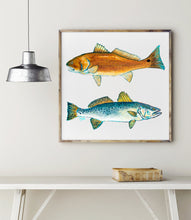 Load image into Gallery viewer, Red Fish and Trout Print Fish Wall Art