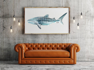 Watercolor Shark Painting Titled Whale Shark