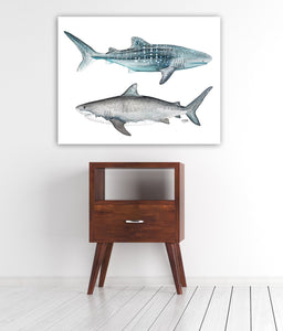 Tiger and Whale Shark Watercolor Art Print
