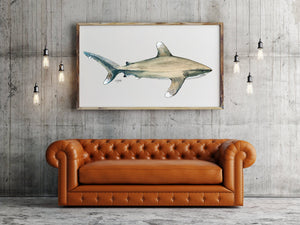 Oceanic Whitetip Shark Art Painting