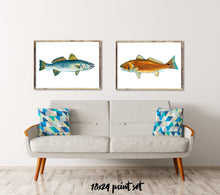 Load image into Gallery viewer, Art Print Set, Gifts for Him, Fisherman Gifts, Fish Art, Discounted Prints, Gallery Wall Art, Coastal Art, Red Fish Art, Fish Painting