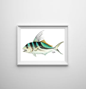 Rooster Fish Watercolor Art Print, Fish Wall Decor, Fish Print, Coastal Art