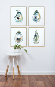 Watercolor Oyster Art Print Set of 4, Oyster Painting, Discounted Prints, Gallery Wall Art