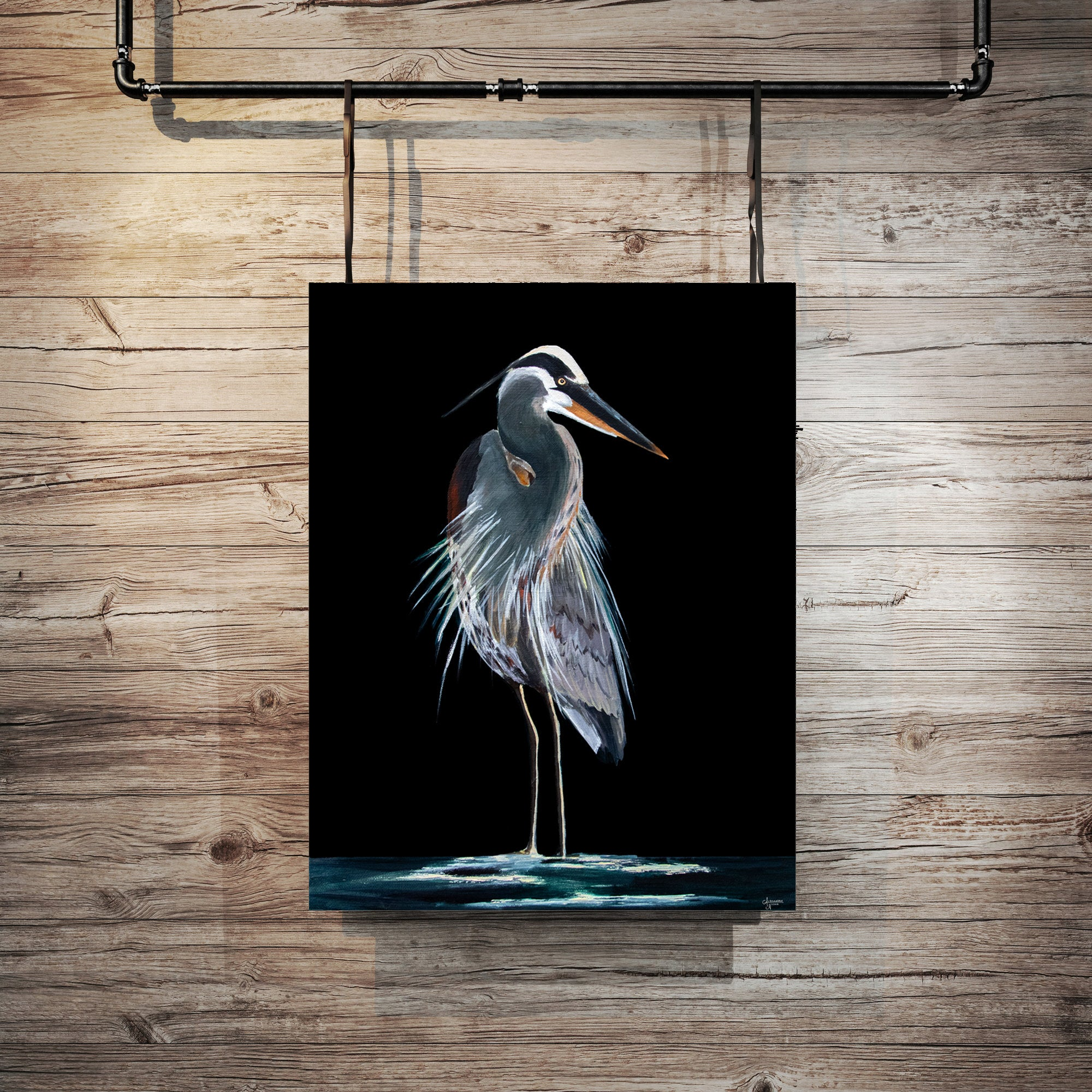 Black background of a painted Great Blue Heron Fine Art Print by Coastal Artist Alexandra Nicole $27
