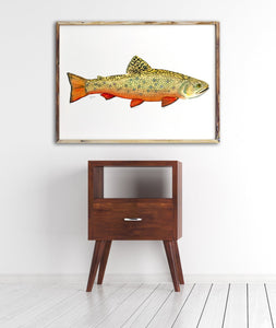 Trout Watercolor Art Print, Brook Trout, Dad Gift, Fisherman Gift, Fish Print