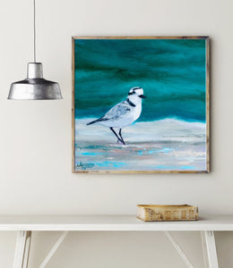 Snowy Plover Art, Plover Painting, Shorebird Art, Coastal Bird Art, Shore birds Coastal Art Print