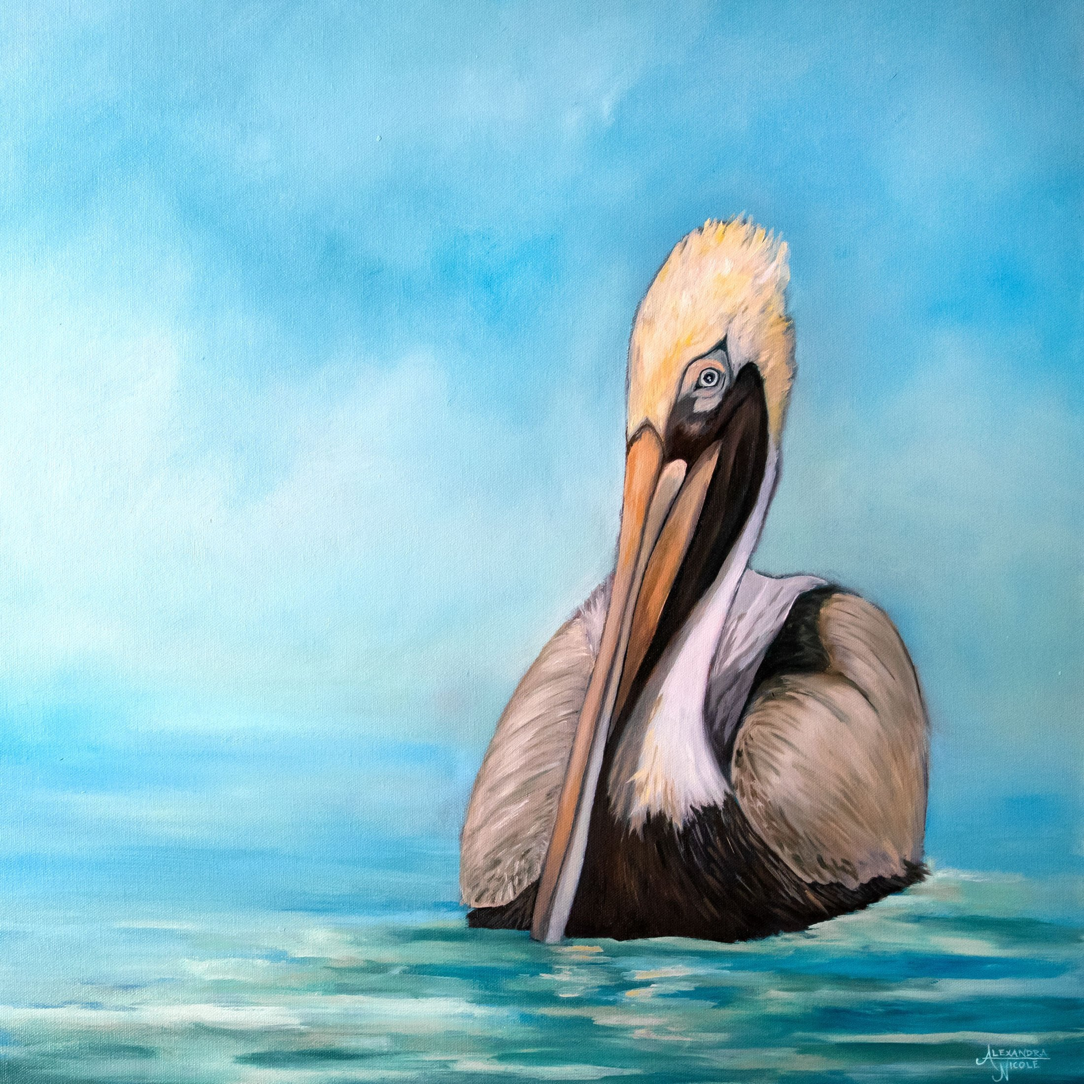 Pelican Art Print - Nigel the Brown Pelican by Coastal Artist Alexandra Nicole $42