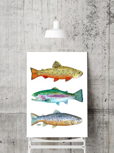 Trout Art Print, Brook Trout, Brown Trout, Rainbow Trout, Fish Watercolor Art Print, Fishing Gifts for Men, Watercolor Trout Print,