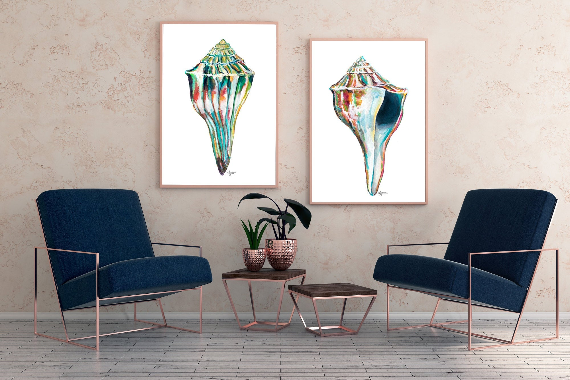 Whelk Sea Shell Duo Wall Art, Discounted Print Set