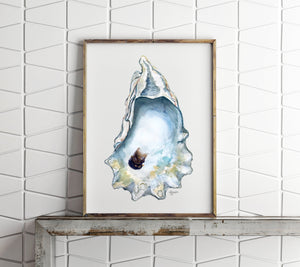 NEW Watercolor Oyster Shell Art Prints by Alexandra Nicole, Shell Art Print, Coastal Art, Watercolor Oyster, Title Great Dunes