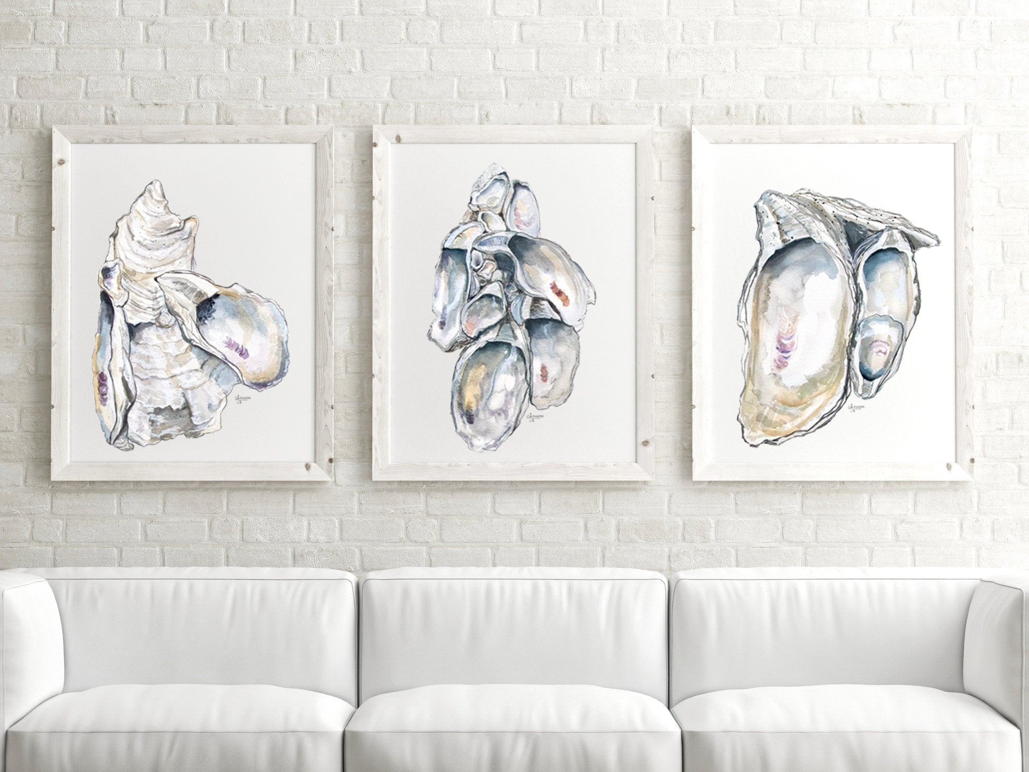 Oyster Cluster Watercolor Discounted Print Set of 3