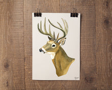 Load image into Gallery viewer, Watercolor White Tailed Deer Painting, White Tailed Deer Buck, Deer Art, Deer Painting, Woodland Animal Print, Forest Animal Print,