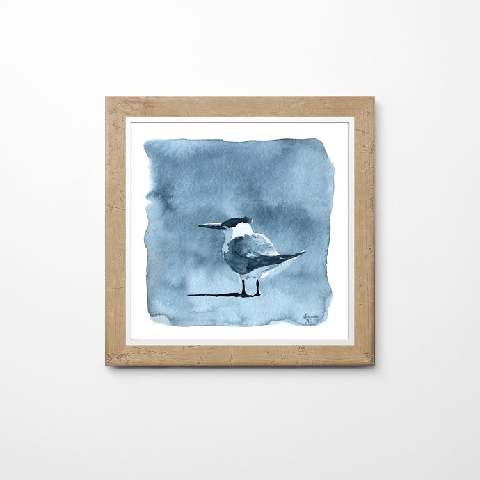 Shore bird Painting, Shore Bird Print, Royal Tern Painting, Bird Wall Art, Coastal Art, Watercolor Art, Black and White Painting