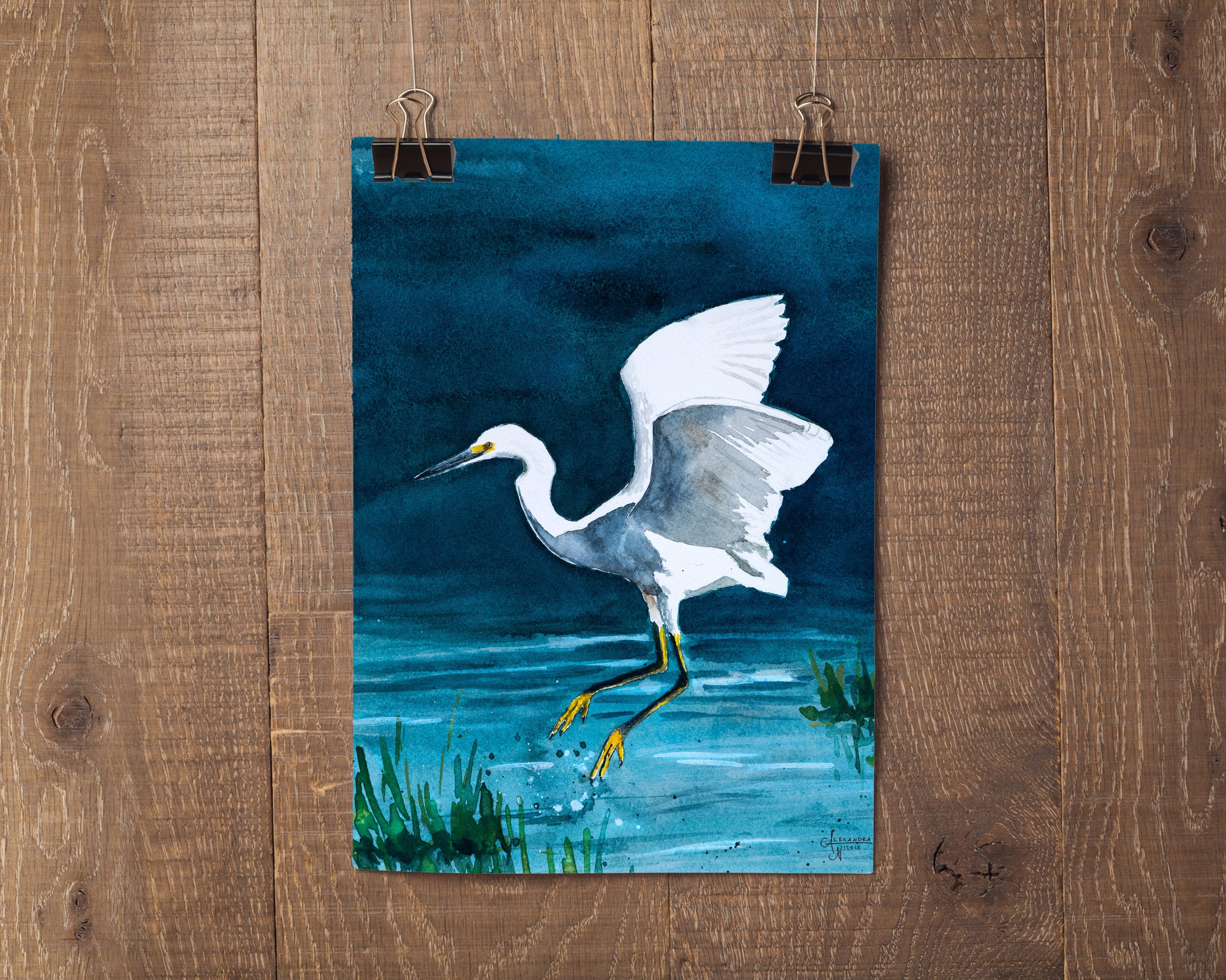 Snowy Egret Watercolor Bird by Coastal Artist Alexandra Nicole $27