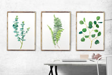 Load image into Gallery viewer, Set of 3 Botanical Prints, Botanical Art, Plant Wall Art, Eucalyptus Print, Fern Print, Plant Print Sets