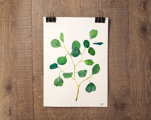 Eucalyptus Print, Botanical Prints, Botanical Art, Plant Wall Art, Woodland Art, Botanical Illustration, Silver Dollar Eucalyptus Print