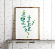 Load image into Gallery viewer, Eucalyptus Print, Botanical Print, Plant Wall Art, Woodland Art, Botanical Illustration, True Blue Eucalyptus
