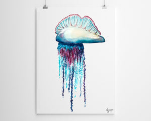 Portuguese Man O War, Jellyfish Painting, Jellyfish Art, Ocean Wall Art,  Sea Life Art