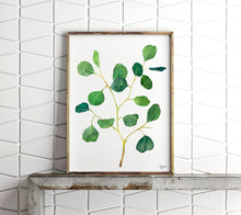 Load image into Gallery viewer, Eucalyptus Print, Botanical Prints, Botanical Art, Plant Wall Art, Woodland Art, Botanical Illustration, Silver Dollar Eucalyptus Print