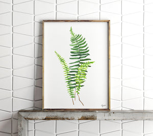 Watercolor Fern Print, Fern Painting, Botanical Art, Plant Wall Art, Botanical Illustration, Botanical Print, Botanical Wall Art