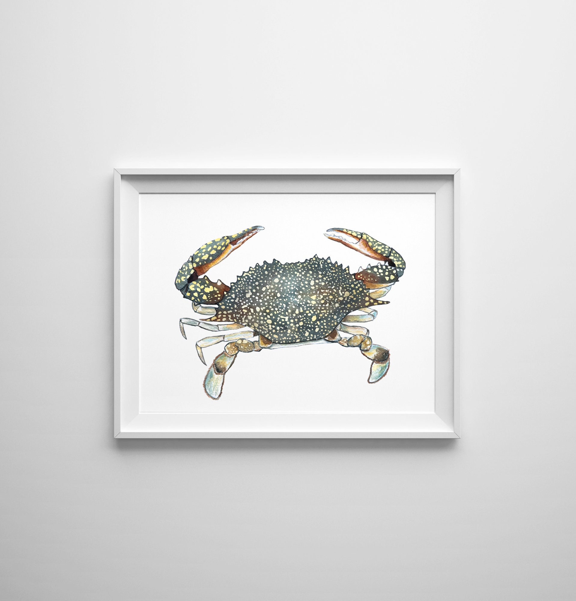 Speckled Swimming Crab by Coastal Artist Alexandra Nicole $32