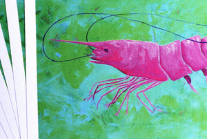 Pink Shrimp Artwork by Alexandra Nicole