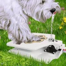 Load image into Gallery viewer, Dog Water Fountain
