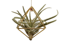 Load image into Gallery viewer, Geometric Gem Plant Ornaments - The Garden Foundation