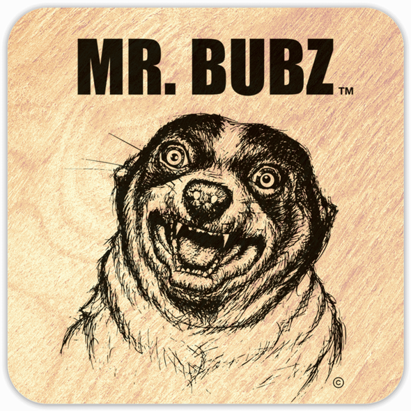 Mr. Bubz Wood Magnets (Set of 3)