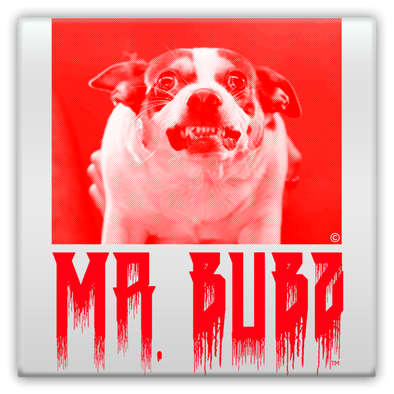 Mr. Bubz Metal Magnets