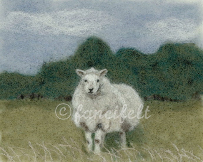 Sheep in Pasture Signed Print