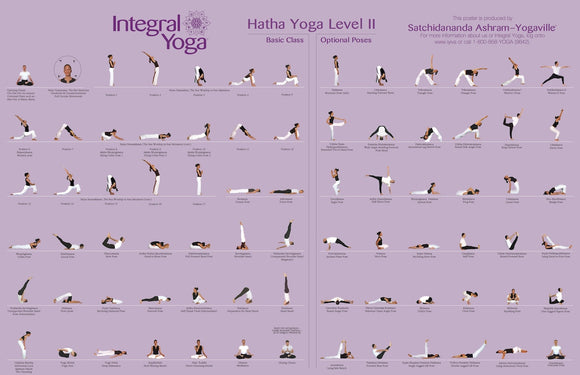 Integral Yoga Hatha Level II Poster