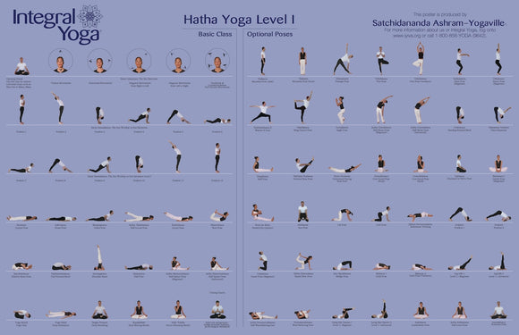 Integral Yoga Hatha Level I Poster