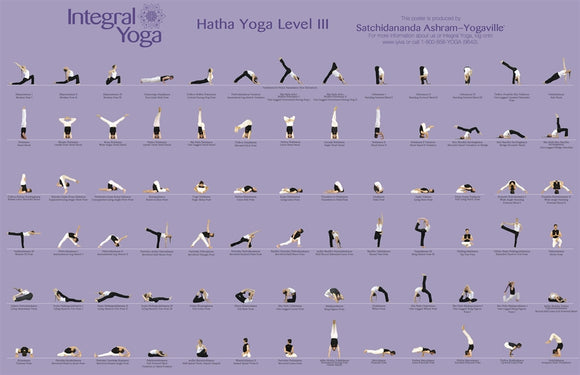 Integral Yoga Hatha Level III Poster